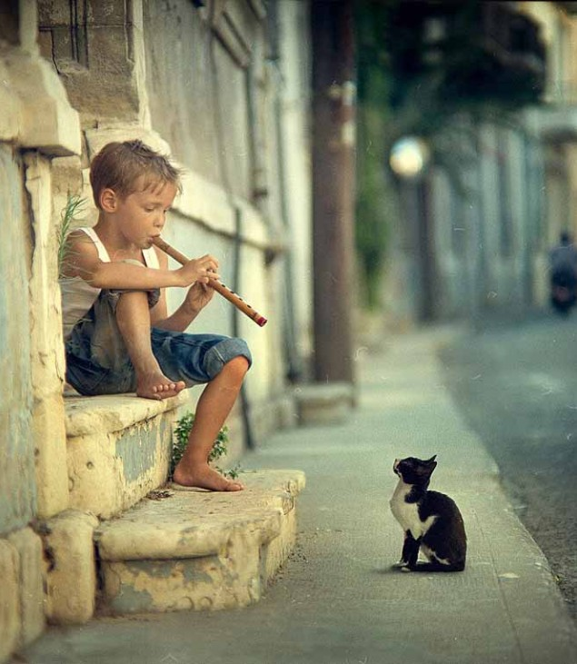 child playing for cat