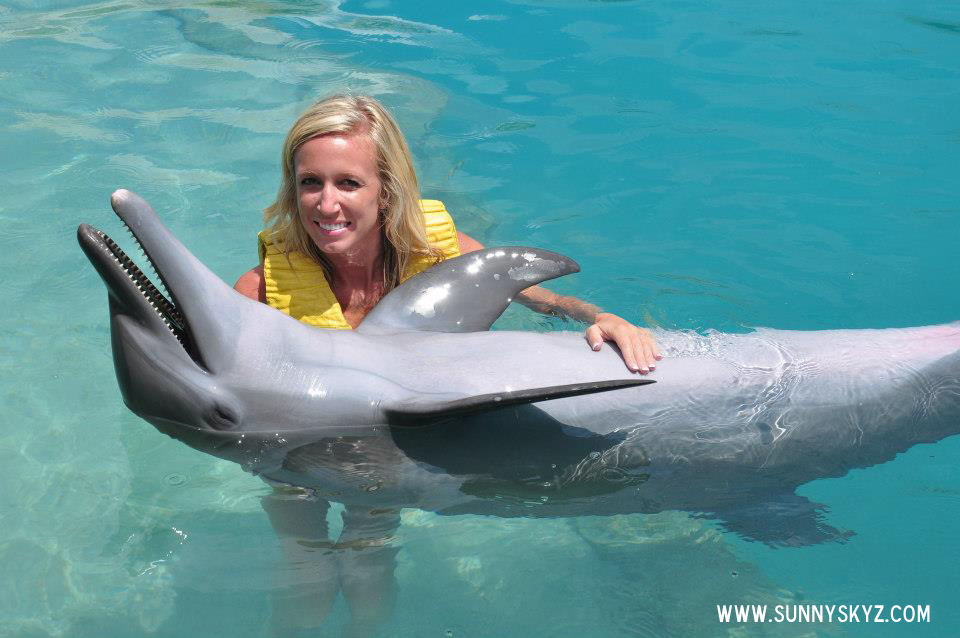 happy dolphin petting