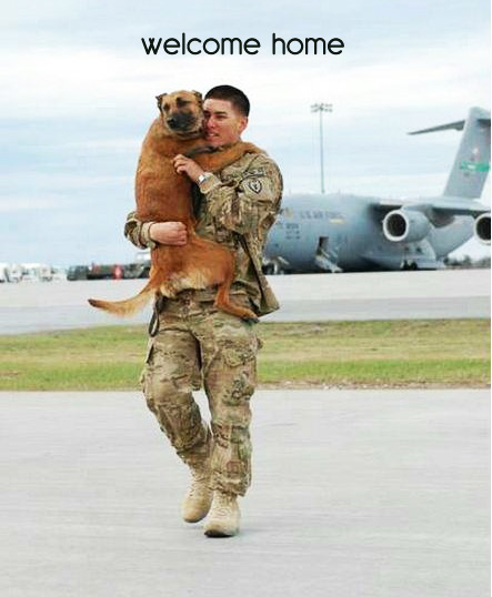 dog welcomes military dad home