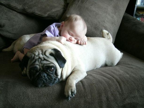 baby sleeping with dog