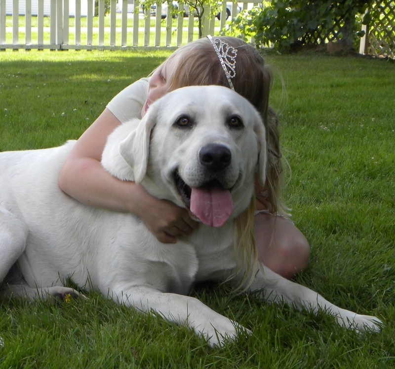 girl hugging lab with love