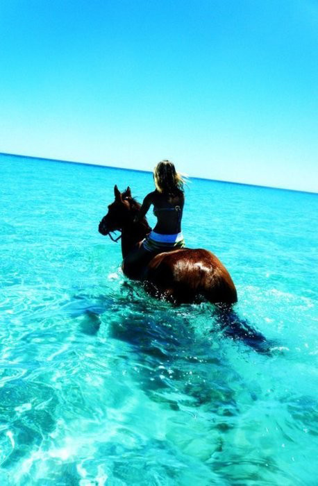 horsebacking in the ocean