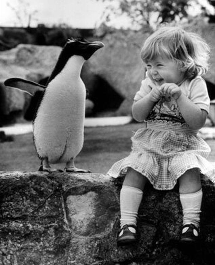 young girl meets penguin