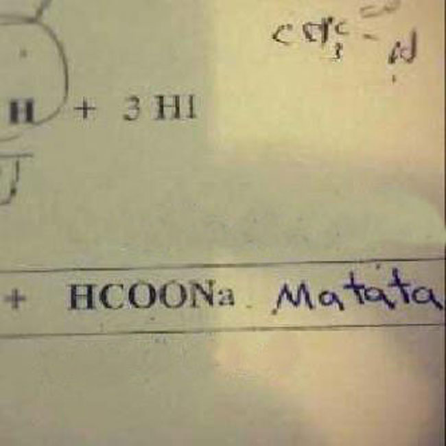 Image result for funny test answers