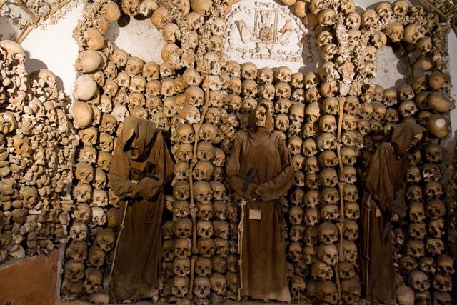 buildings made of bones