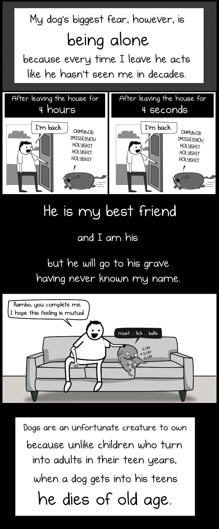 dog paradox