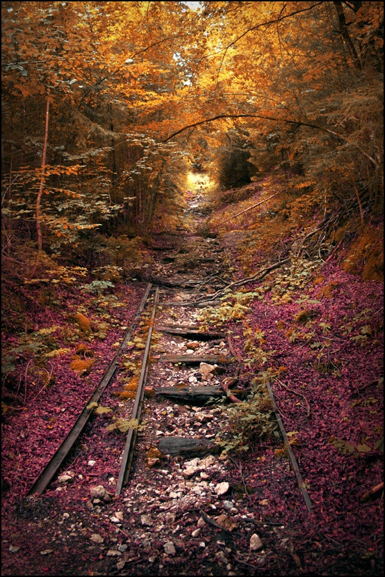 abandoned railroad in the fall