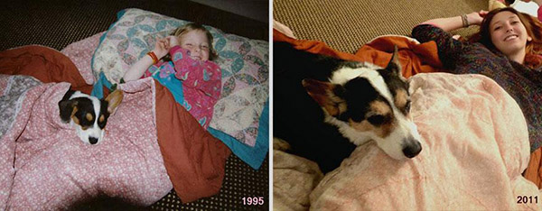 before and after pets