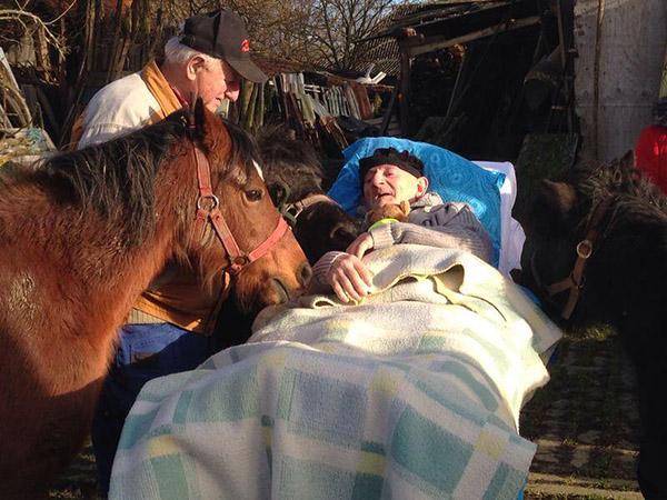 last wish to see his ponies