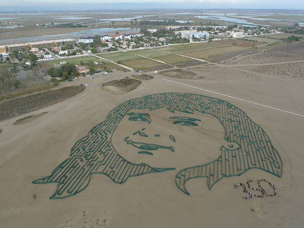amazing art from above