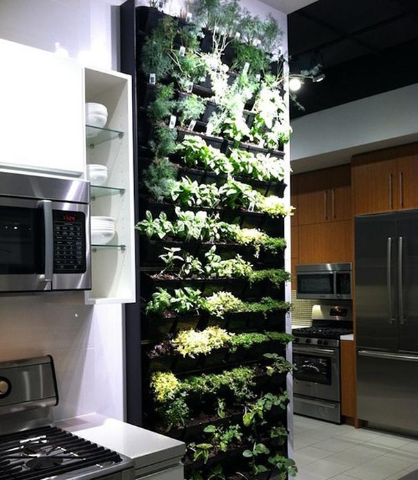 amazing house design ideas