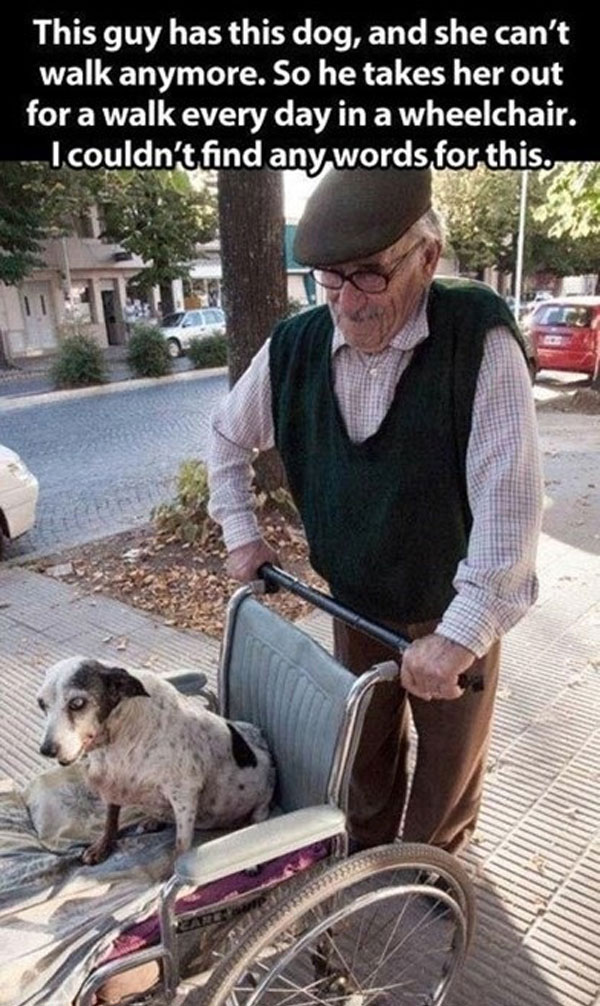 pictures restoring faith in humanity