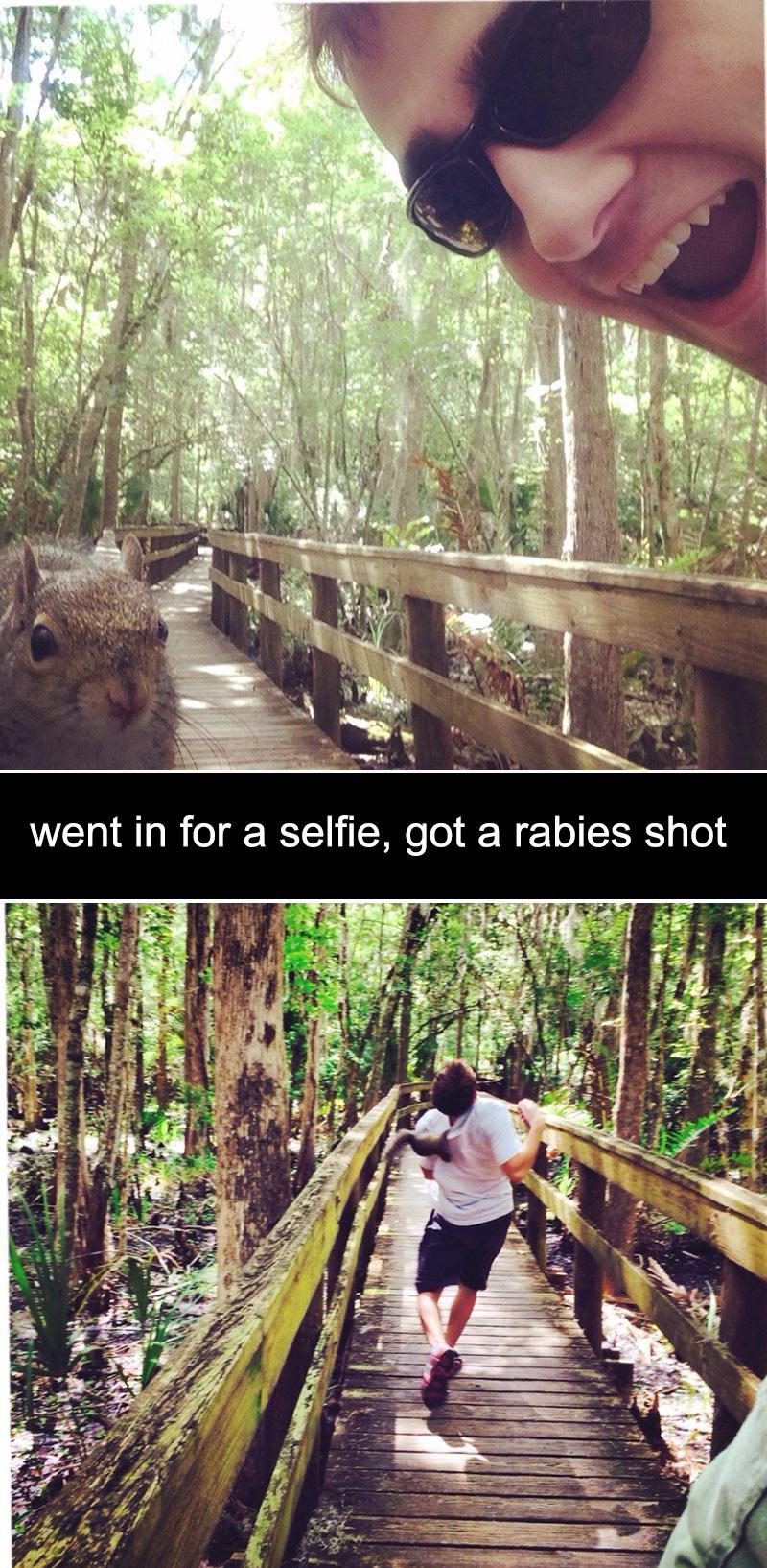selfie squirrel