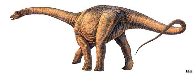 huge dinosaur bones