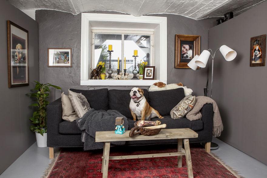 bulldog kettle room