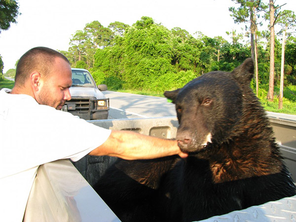 man saves bear from drowning