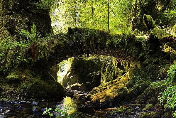 ancient stone bridge in scotland