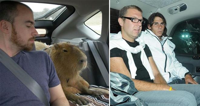 capybara nadal