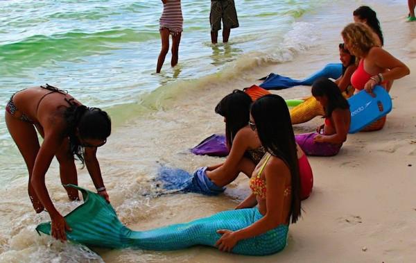 mermaid swimming academy
