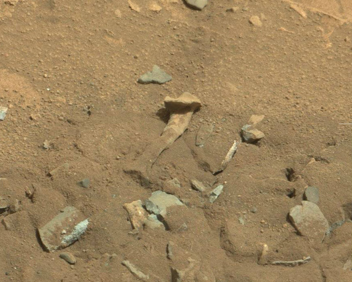 alien thigh bone on Mars