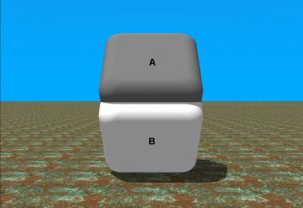 the best optical illusions
