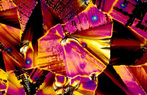 alcoholic drinks under microscope