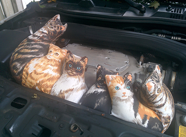 funny fake cats
