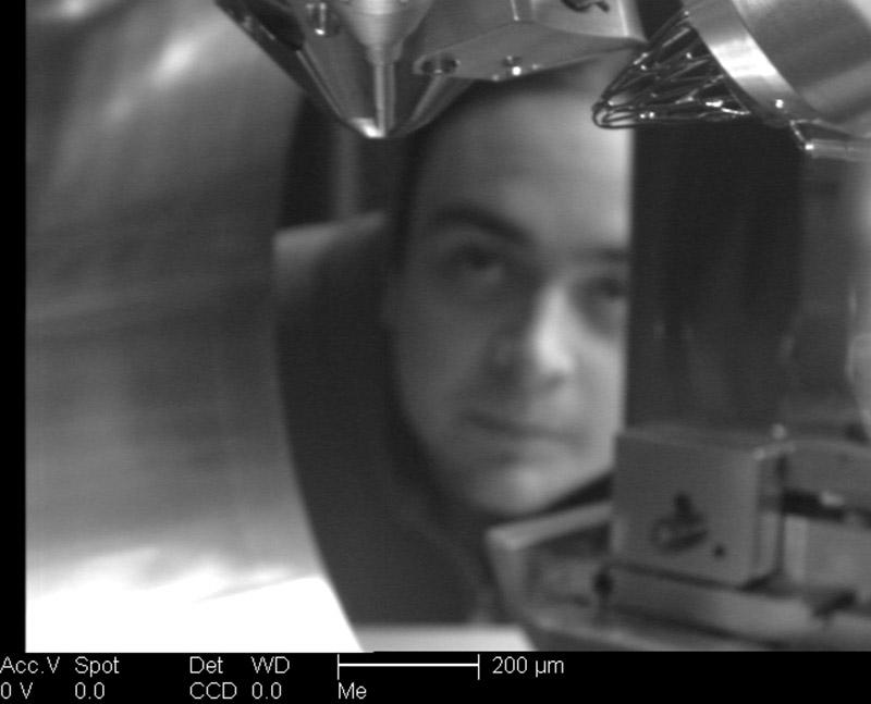 gnat extreme close up microscope