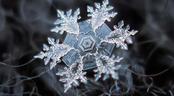 Russian Photographer Takes Stunning Close-Ups Of Individual Snowflakes