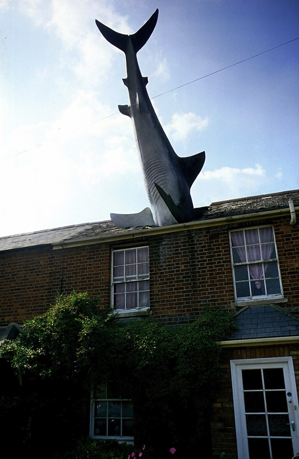 house with giant shark in roof