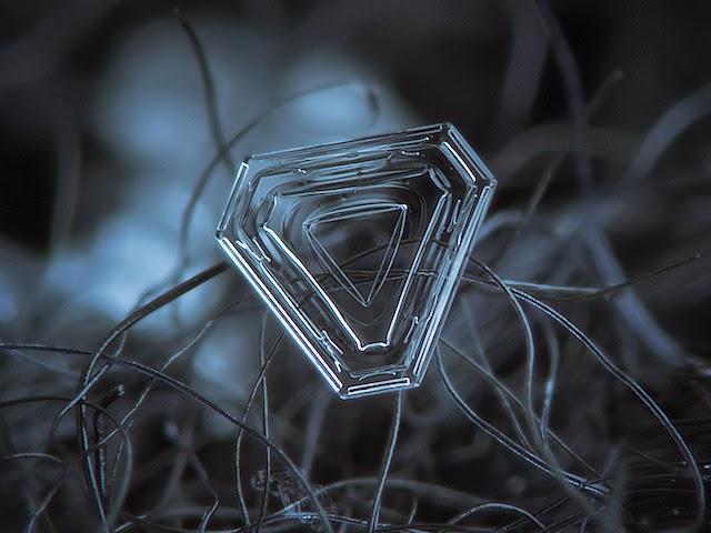 snowflakes closeup