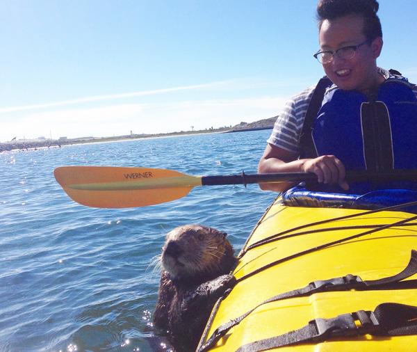 sea otter kayak