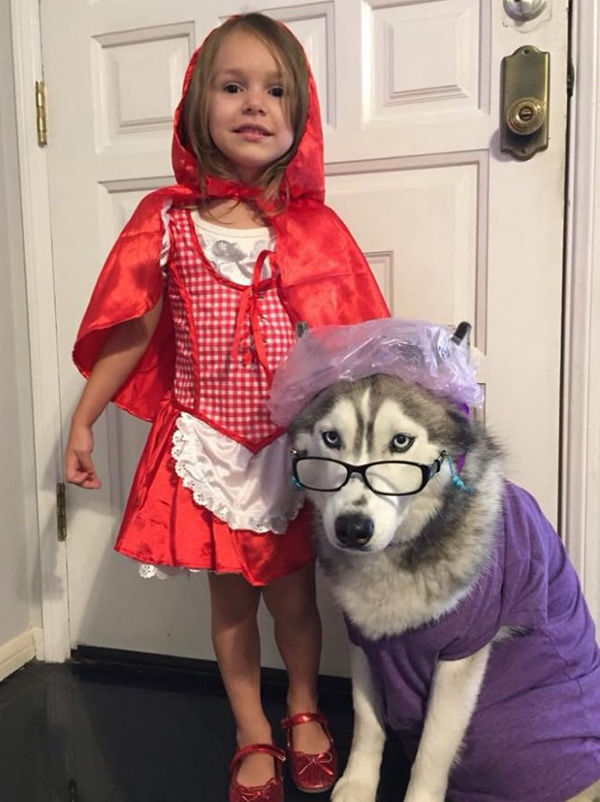 red riding hood girl and grandma dog costume