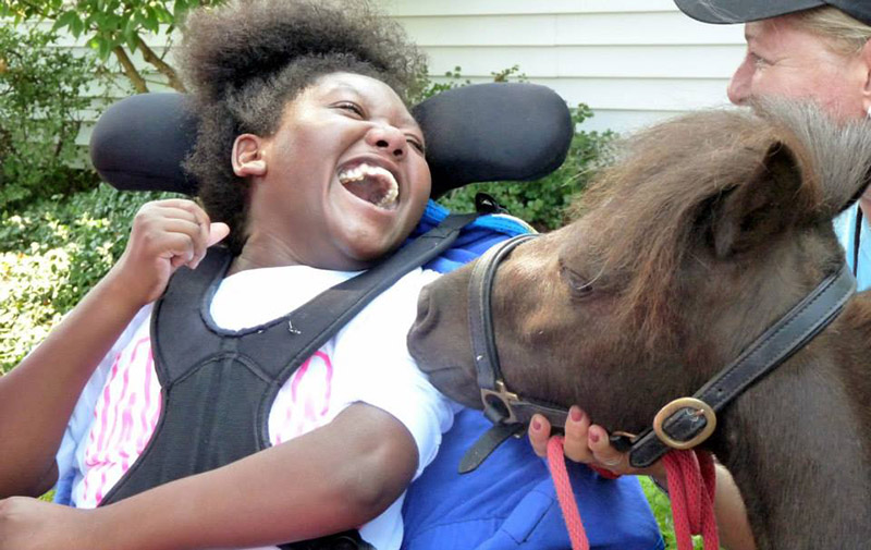 Move Over Dogs Animal Therapy Is For Mini Horses Too