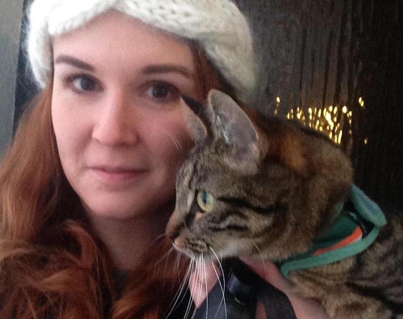 cat best friends story