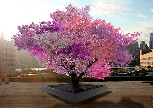 one tree 40 fruits