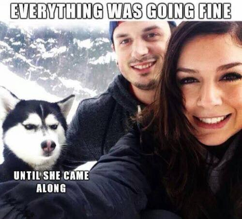 everything was going fine until she showed up meme