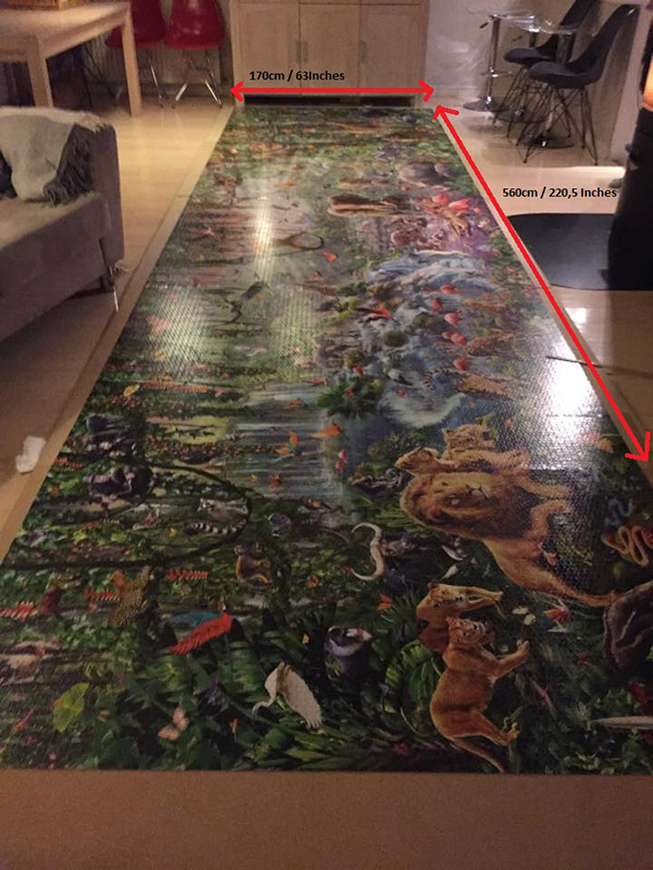 This Girl Just Finished The World S Largest Jigsaw Puzzle
