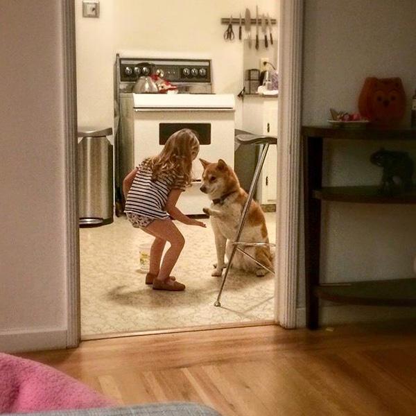 little girl dog high five