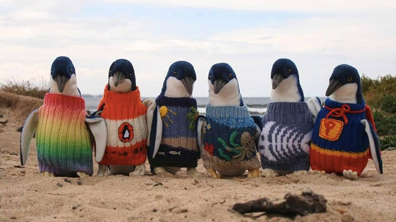 penguins sweaters