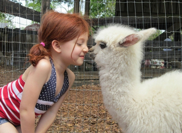 32 Pictures Of Kids And Animals That Will Make Your Day