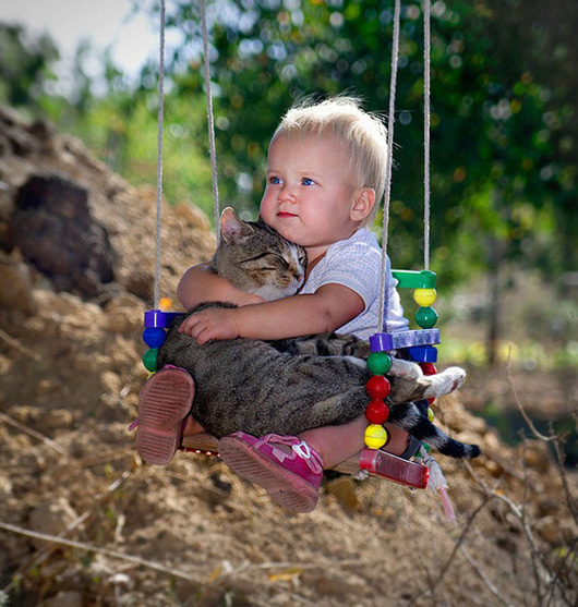 boy holding cat in swing