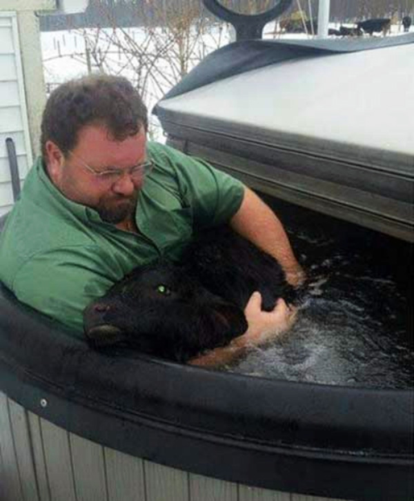 farmer and baby cow hot tub