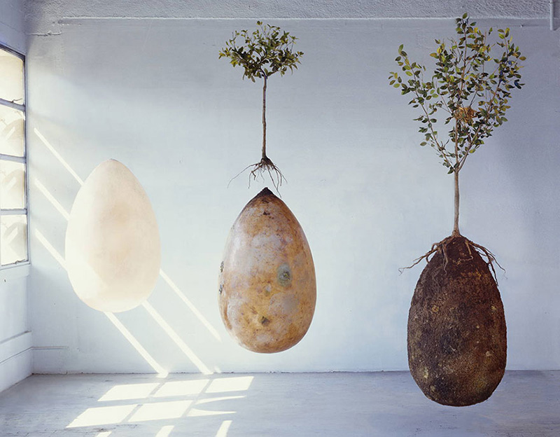 burial pods