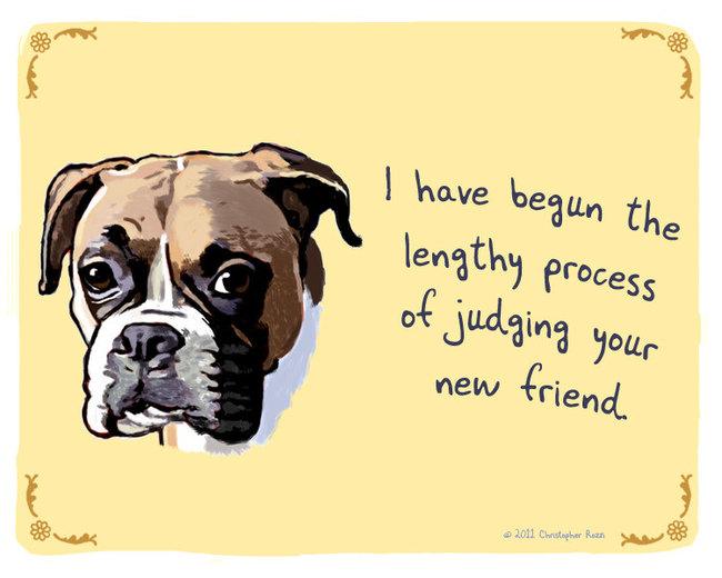 secret thoughts of pets art