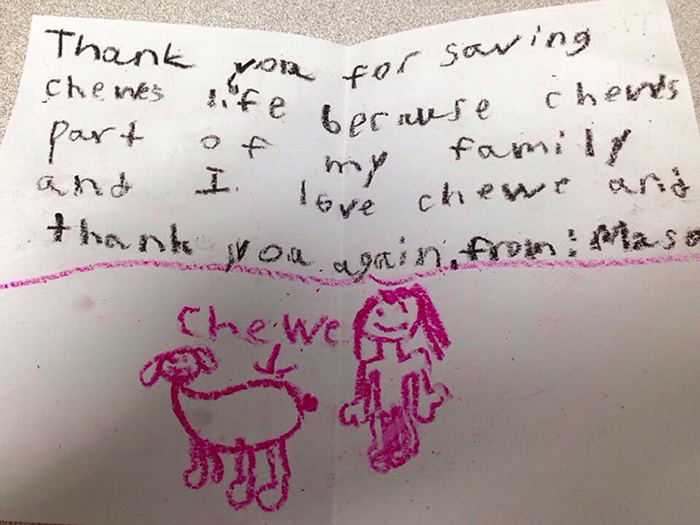 note from boy for saving dog
