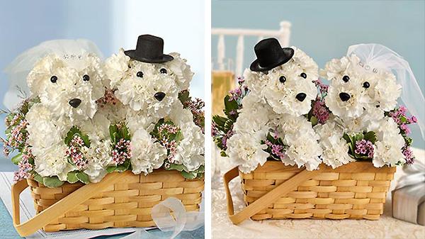 dog flower arrangements