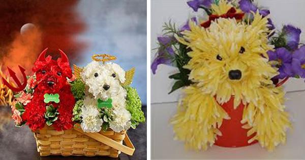 dog flower arrangement