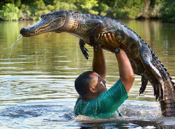 guy holding alligator the lift dirty dancing