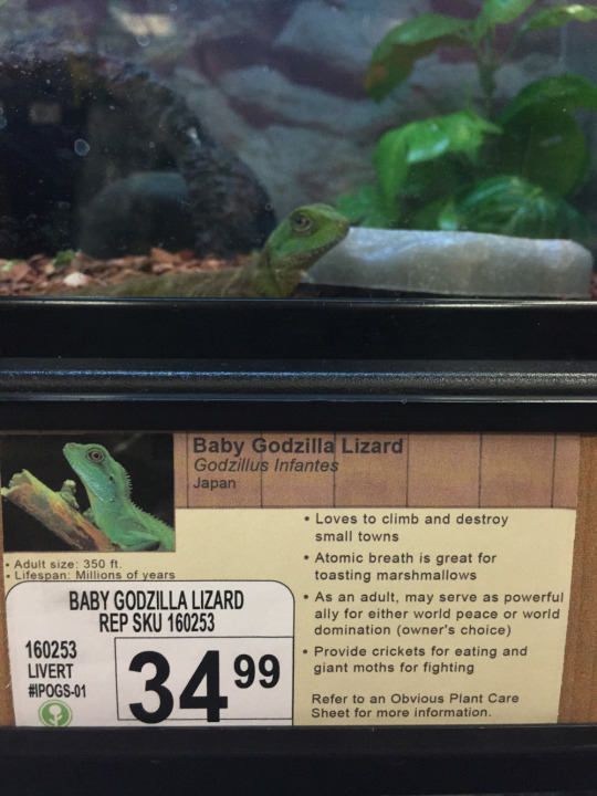 funny new signs at animal store